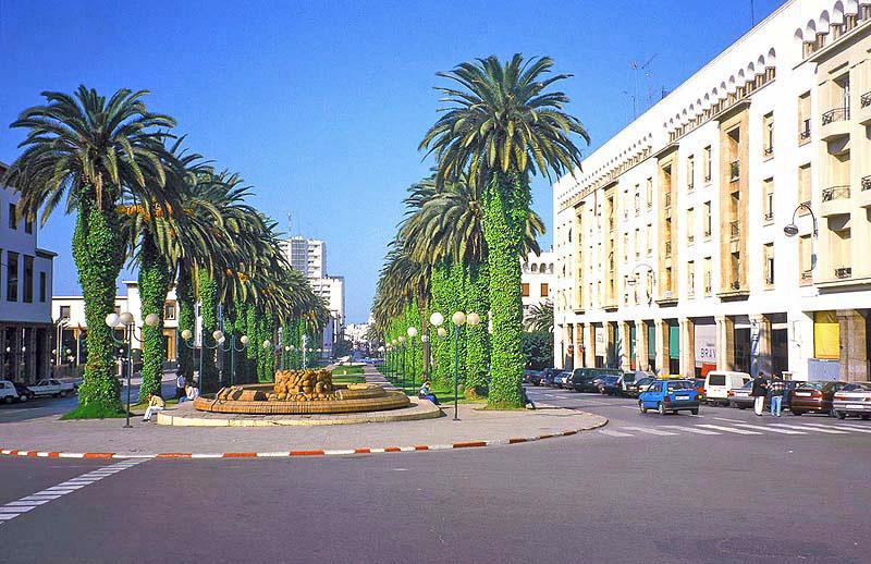 Casablanca Wonderful Train
